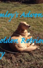 Brimley's Adventure - A Golden retriever Story by addierdennis