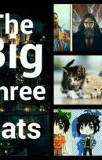 The Big Three Cats by Mashrose