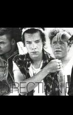 Hard Erection (One Direction dirty imagens) by breadstickniall