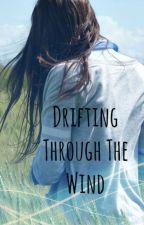 Drifting Through the Wind by jordincarp