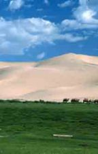 Mongolia: The Farthest Horizon by CynthiaClampitt