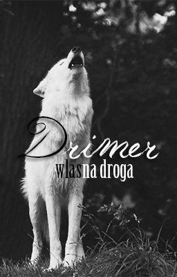 Drimer - własna droga