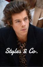 Styles & Co. || harry au / REWRITING by drunkinmichael