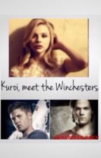 Kuroi, meet the Winchesters (Book 5 of The New Noblesse Series) by AnnabelleRaen