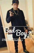 Bad Boy? (Ardy FF) by just-marina