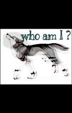 Who Am I? by daniely24ka
