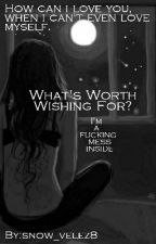 what's worth wishing for? by snow_velez8