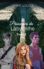 Prisonniers du Labyrinthe by AmmeLouise