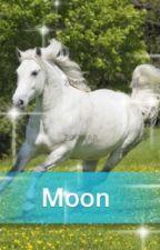 Moon der Weiße Mustang by AlinaHassert