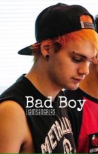 Bad Boy | m.c. by -taylorsmith-