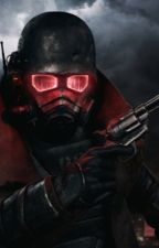 Fallout new vegas by Richtofen114