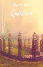 Quidditch by Wizbef