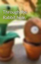 Through the Rabbit hole. by Burmagirrr