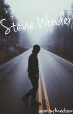 Stevie Wonder by Overbythedoor