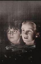 Drarry- Harrys secrect sister by FanPeopleReunite