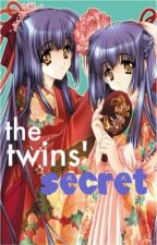 The Twins' Secret by minette
