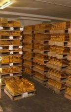 Certified Gold Exchange Inc. by certifiedgold