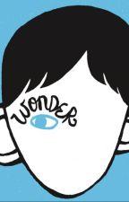 Theme in Wonder-A Short Essay by bbglow