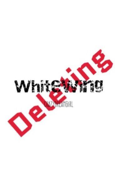 WhiteWing (NightWing Fanfic)