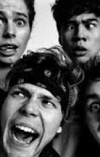 5SOS Jokes, Imagines and All Around Randomness. by Letthemeatpiecas