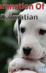 The Damnation Of The Dalmation by MigNick17
