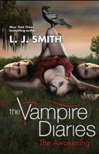 The vampire diaries The Awakening by INFIRESMAN7