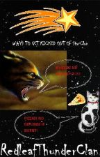 Ways to Get Kicked Out of StarClan by RedleafThunderClan