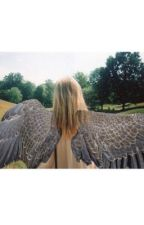 Maximum Ride, Afterall by arnaecal