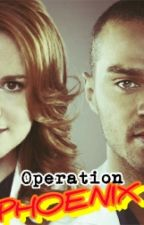 Operation Phoenix (Grey's Anatomy Japril Fanfic) by Sheena726