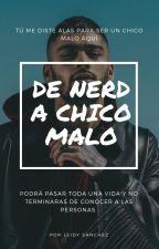 De nerd a chico malo [Z.M.] by LeidySanchez072