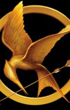 Hunger games: edizione finale by LucaColarossi