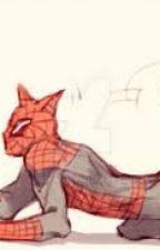 SpiderKitty by kikigraysonwest