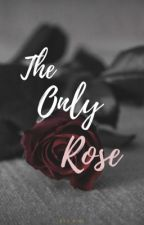 The Only Rose (Completed) by ess_pink