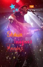 Shawn Mendes Imagines. by oniggerminaj