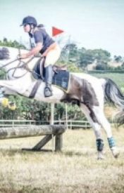 my first show jumping by maratsire