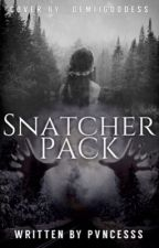 Snatcher Pack by pvncesss