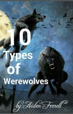 10 types of werewolves<Completed> by SoullessSmolBean