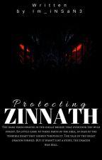 Protecting Zinnath by Im_iNSaN3