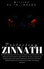 Protecting Zinnath by Im_iNSaN3