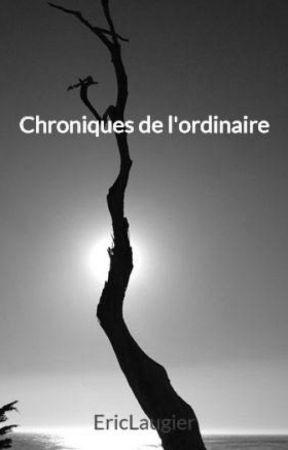 Chroniques de l'ordinaire by EricLaugier