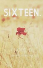 Sixteen. by mismatchedidentity