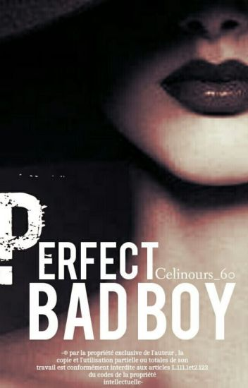 Perfect Bad Boy. TOME 1