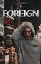FOREIGN & FLEE (Editando) by palvinbiex