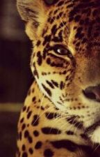 Требование Ягуара by MikkenaCher