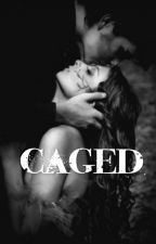 Caged-A BDSM Story by TheKingOfTheNorth