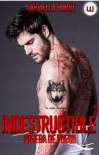 Indestructible #2: Sanctasanctórum (+18) by gabriella_is