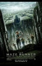 The Maze Runner Imagines and Preferences part 2 by fandomsbaby