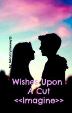 Wishes Upon A Cut <<Imagine>> by februarymonkey25