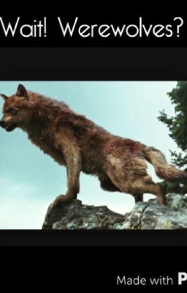 Wait! Werewolves? (Complete)