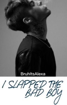 I Slapped The Bad Boy by BruhItsAlexa